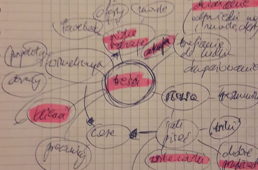 slownik marki mind mapping